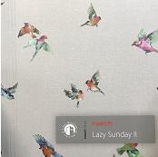Lazy Sunday II 2020
